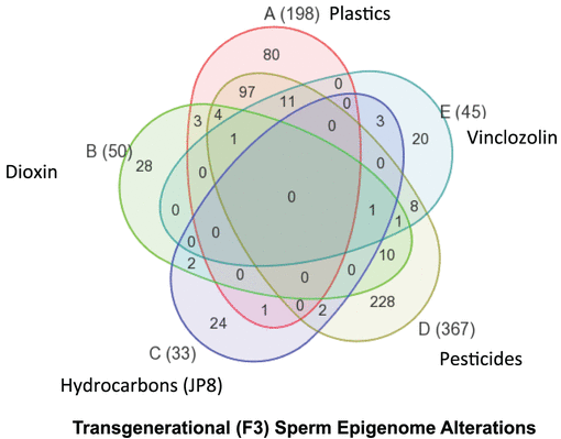 F3 sperm epimutations