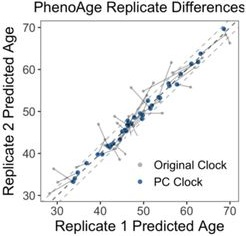 PCPhenoAge vs. PhenoAge