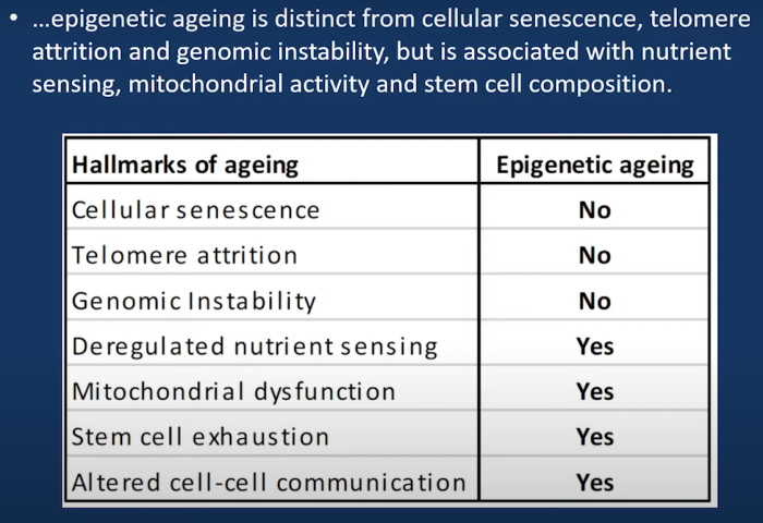 epigenetic aging vs. hallmarks of aging
